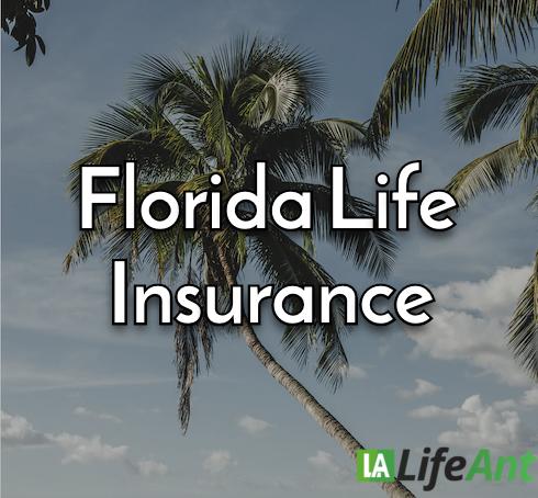 florida life insurance