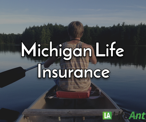 Michigan life insurance