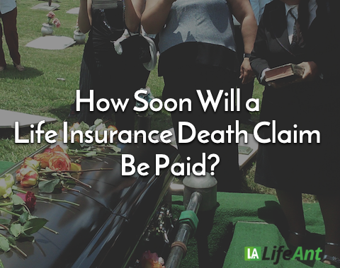 how long does it take for life insurance to pay out