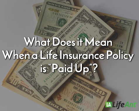 paid up life insurance