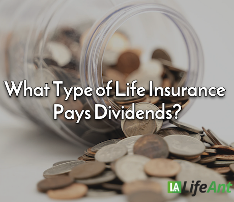 What Type of Life Insurance Pays Dividends?