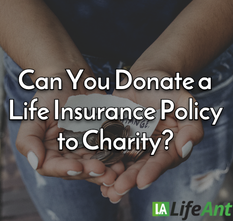 Can You Donate a Life Insurance Policy to Charity?