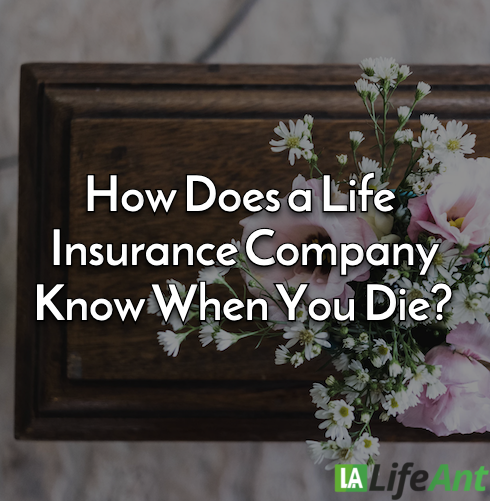 How Does a Life Insurance Company Know When You Die?