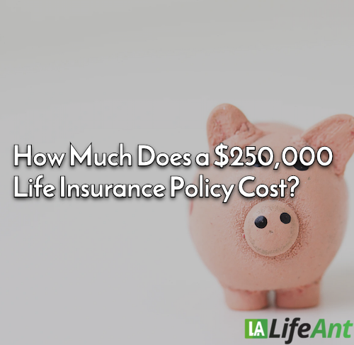 How Much Does a $250,000 Life Insurance Policy Cost?